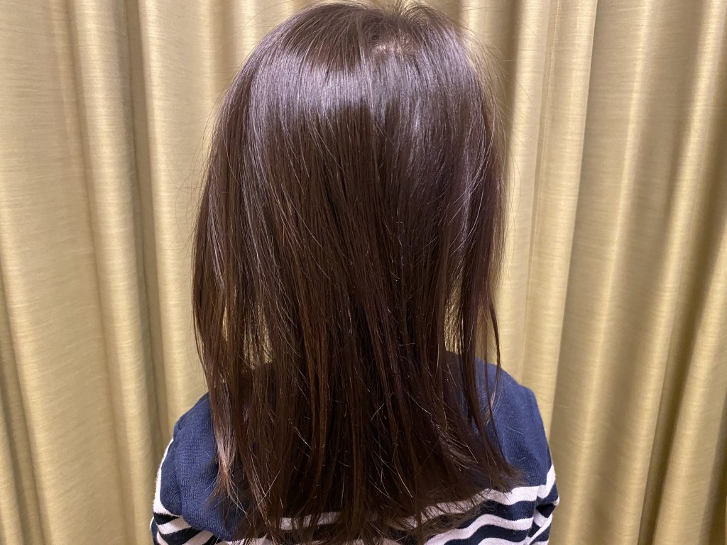 パナソニック ヘアドライヤー ナノケア EH-NE23 髪の状態