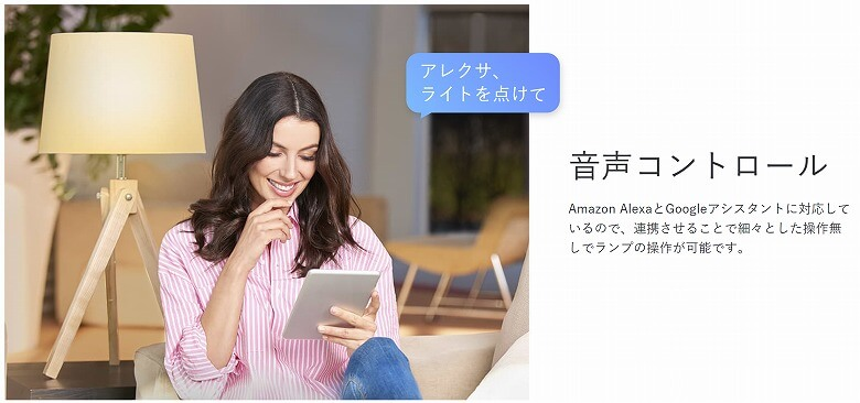 TP-Link Tapo L510E 音声コントロール
