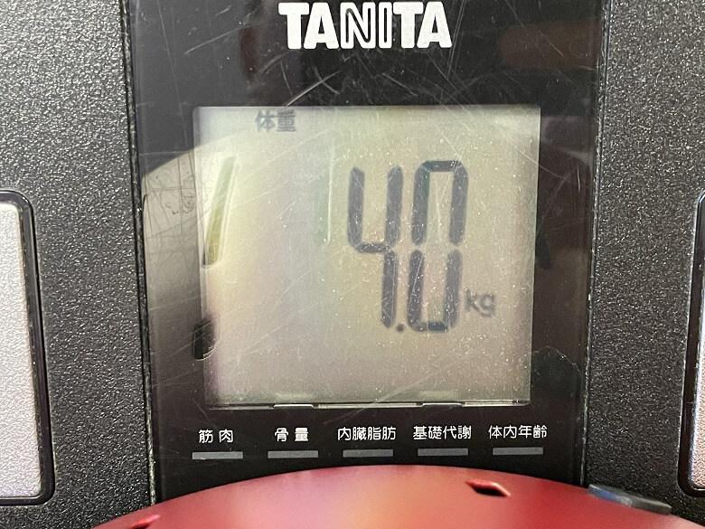 ハーフェレジャパン ロータスグリル 重さ